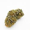 tropical pine cannabis light
