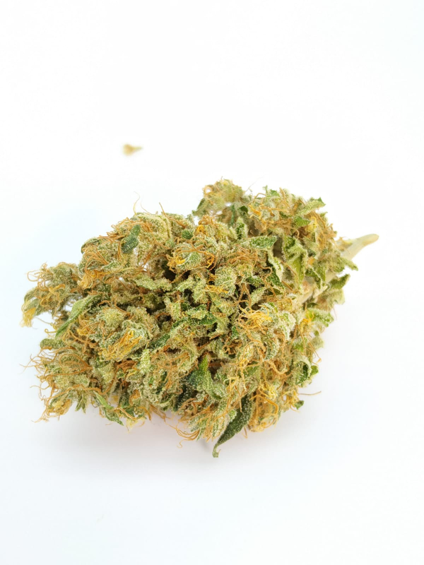 cannabis light diesel cbd