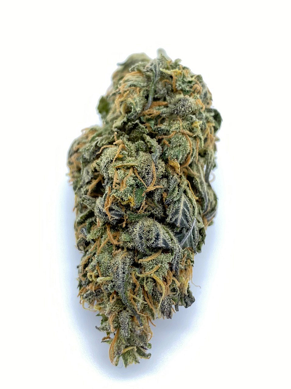 monkey cbd cannabis light